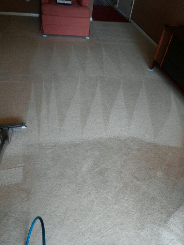 carpet-cleaning-by-precise-carpet-cleaning