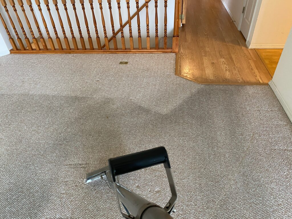 Cleaning carpet picture