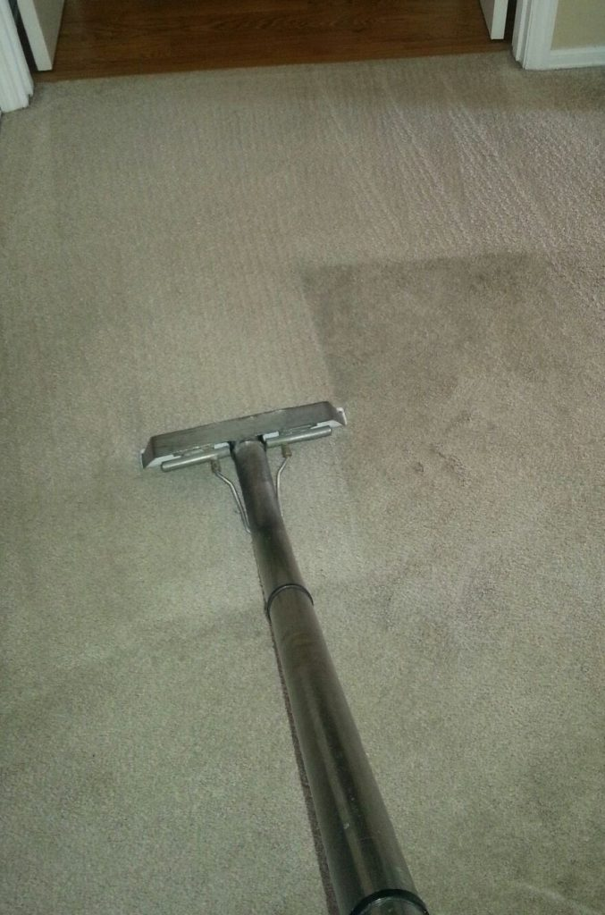 carpet-cleaning-picture1