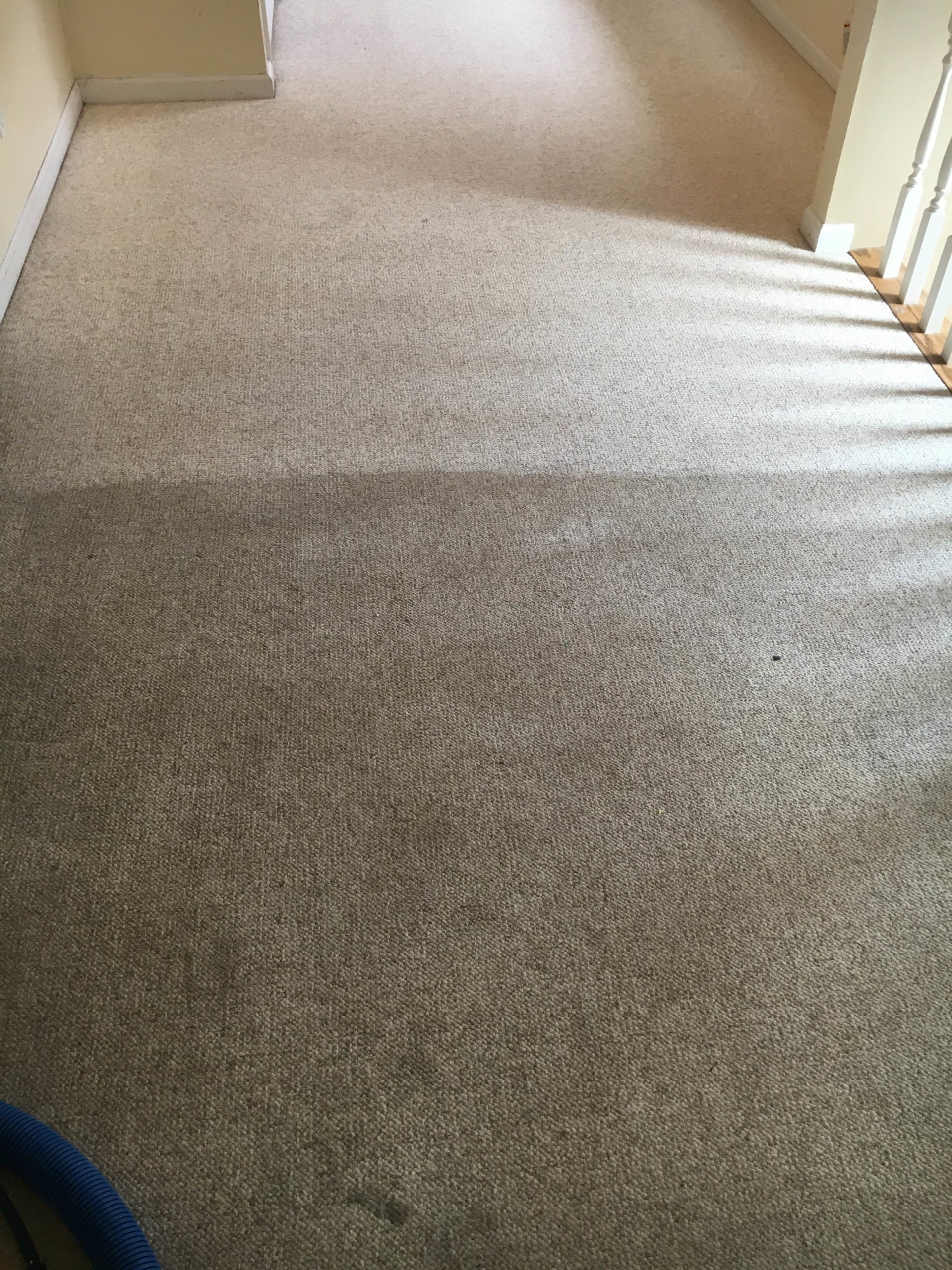 Carpet Cleaning Maryland Heights