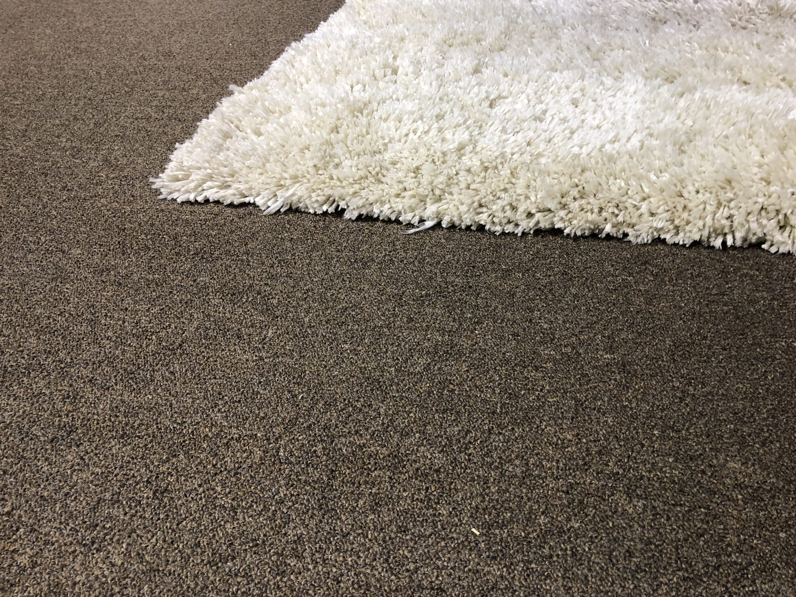 Picture of shag rug