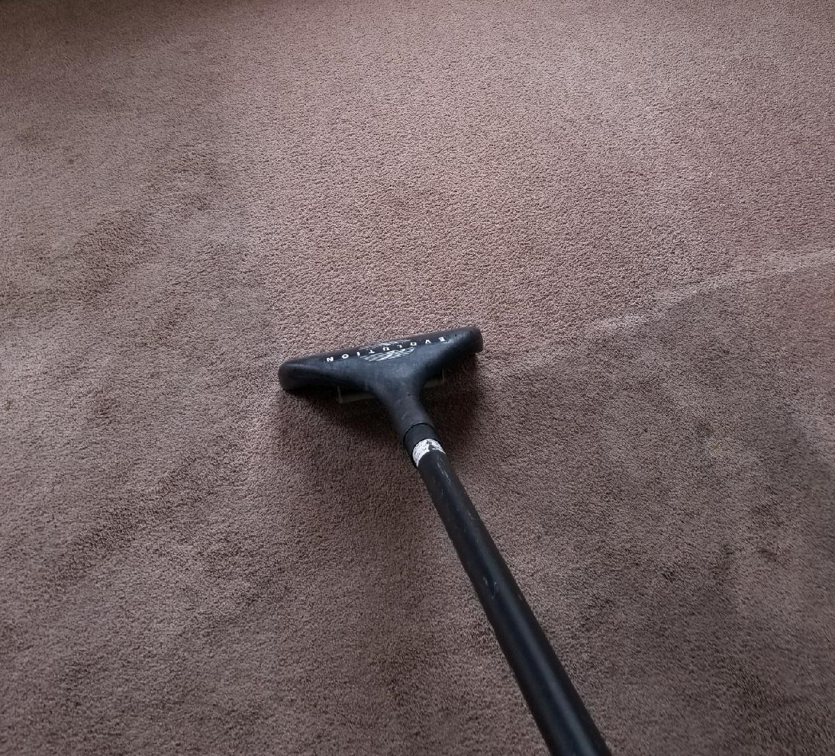 Precise Carpet Cleaning process