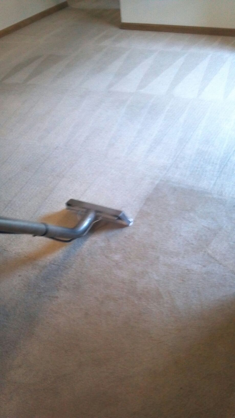 Carpet cleaning service in Missouri