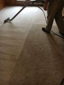 Carpet Cleaners St. Charles