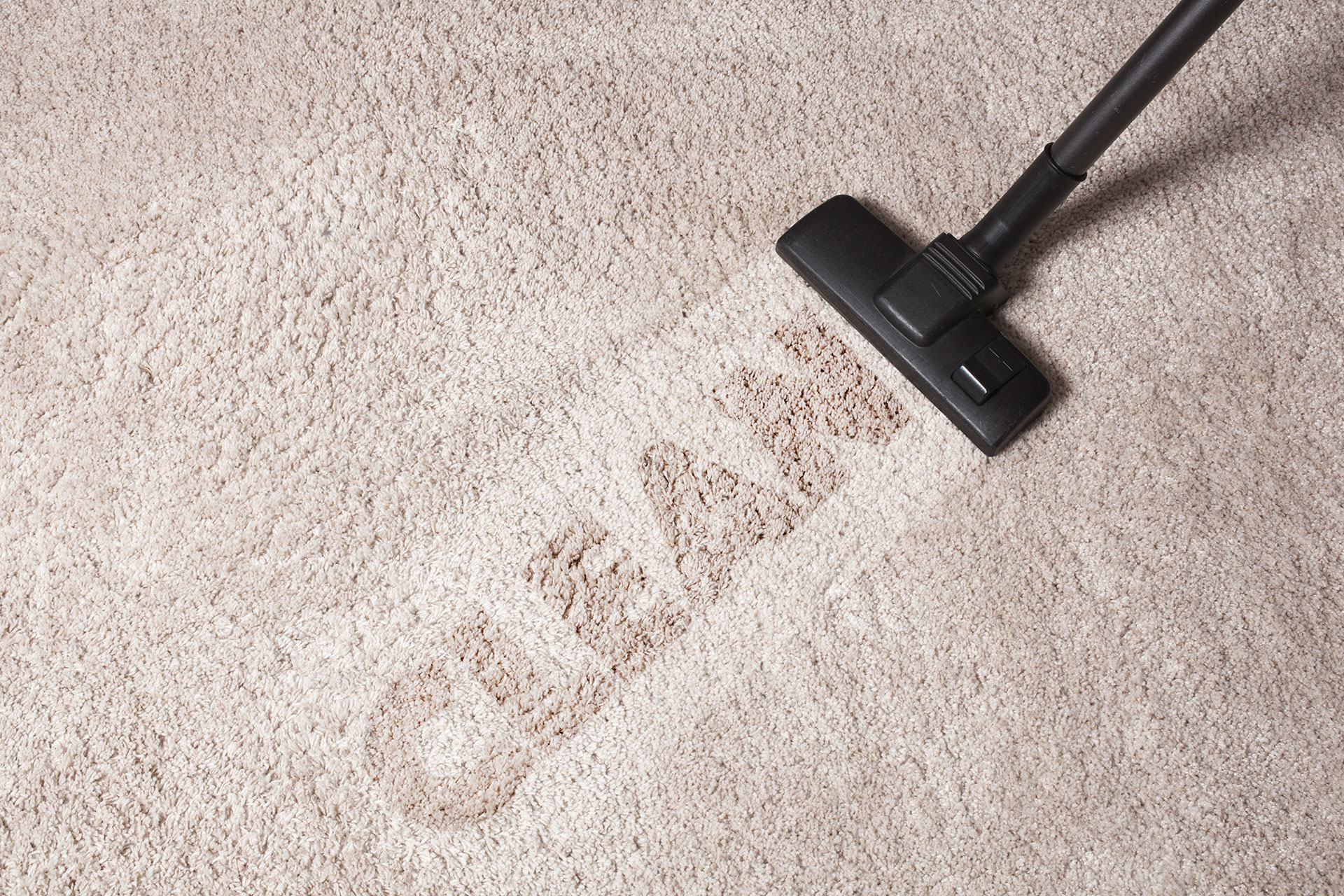 clean-carpet-services